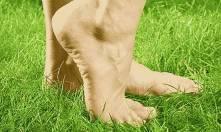 ортопедические стельки киев аватаж