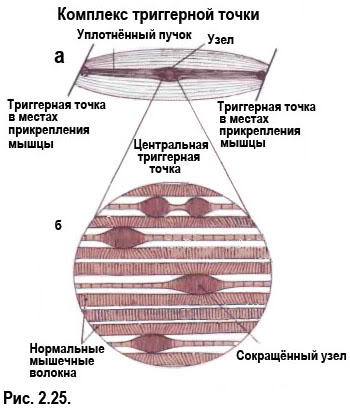 Лечение отека ног перекисью водорода