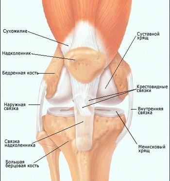 Операция на мениске связка коленного сустава